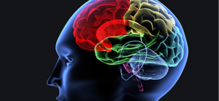 Brain Mapping Machine to tackle criminals Forensic Science Laboratory Junga Himachal Pradesh