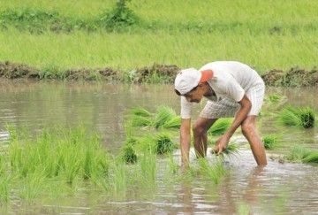 crop insurance will be linked with kisan credit card